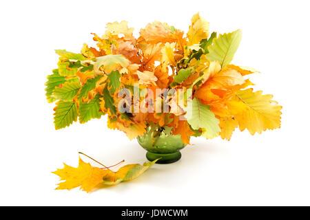Zusammensetzung des Herbstes verlässt isolierten auf weißen Hintergrund - Stockfoto