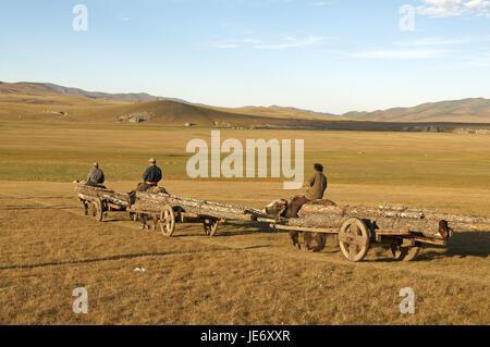 Mongolei, Zentralasien, Provinz Arkhangai, Nomaden, Yaks, Wagen aus Holz tragen, - Stockfoto