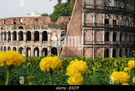 Kolosseum, Amphitheater in Rom, Italien mit Gruppe von unscharfen gelben Ringelblumen in der front - Stockfoto