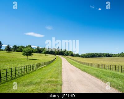 Eine blasse Landstraße unter strahlend blauem Himmel und Rückzug in einen fernen Fluchtpunkt an einem sonnigen Tag - Stockfoto