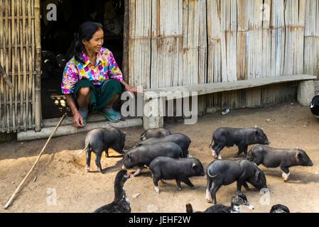 Eine Frau setzt sich auf die Stufe ihres Hauses ein fuhr der Ferkel füttern; Der Provinz Luang Prabang, Laos - Stockfoto