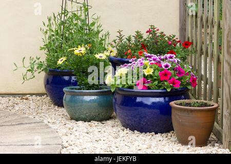 Töpfe mit Blumen in einem kleinen Garten - Stockfoto