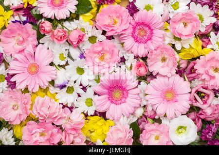 Gerbera und andere verschiedenen Blumen arrangiert als bunte ...