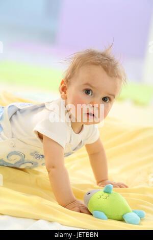 Baby, 5 Monate, Porträt, Hinzufügen von Unterstützung, - Stockfoto