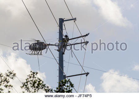 Okt 17 Hurrikan Matthew Reparaturen - Stockfoto