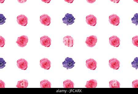 Vintage Rosa Garten rose Knospe und Rosen Blumen, Blätter einfach lila Anemone Blumenstrauß Musterdesign Hintergrund, - Stockfoto