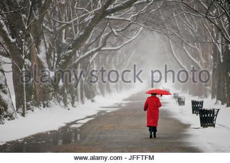 Eine Frau in einem roten Mantel mit einem roten Regenschirm zu Fuß in einer verschneiten Landschaft auf der national - Stockfoto