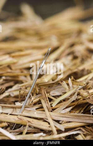 Nadel im Heuhaufen - Stockfoto