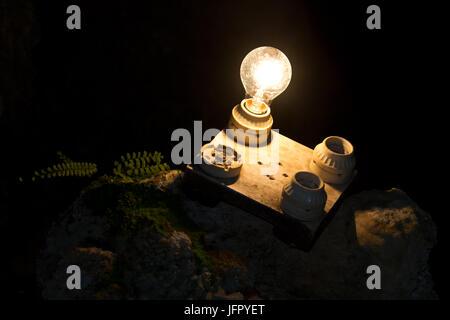 eine Glühbirne von vier anderen. Eine Metapher für die richtige Entscheidung. - Stockfoto