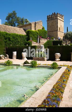 Teiche in den Gärten des Alcázar de Los Reyes Cristianos, Córdoba, Spanien. - Stockfoto