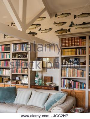Sammlung Von Wand Fisch über Bücherregale Im Wohnzimmer   Stockfoto
