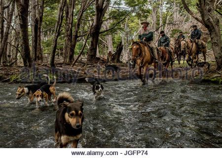 Bagualeros, Cowboys, die wilden Tiere erfassen überqueren ein Flusses in Sutherland auf der Suche nach Tieren. - Stockfoto
