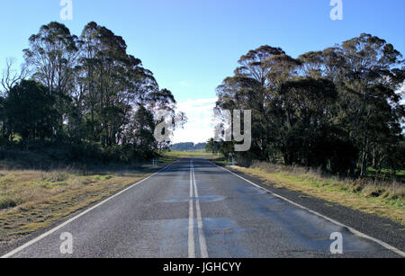 Schöne Landstraße mit grünen Rasen Wiese, Bäume und blauer Himmel im Hintergrund in New South Wales Australien - Stockfoto