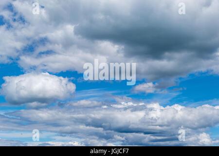 Cumulus-Wolken vor blauem Himmel - Stockfoto