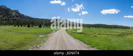 Schotterpiste biegt sich durch einen riesigen grünen Bergwiese im amerikanischen Westen. - Stockfoto