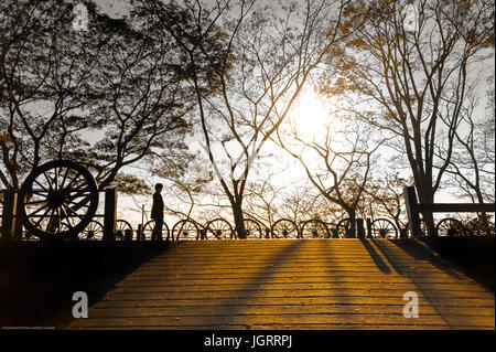 Frau in der Silhouette am goldenen Stunde wandern. Goldenes Sonnenlicht scheint durch Bäume. Fallende Blätter in - Stockfoto