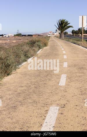 Schmutzigen Straße. Off-Road Frühling Trockenrasen. Wüste, Palme, Boden, Stein Weg. - Stockfoto