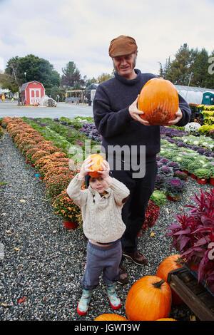 Porträt eines jungen und seines Vaters hält Kürbisse in Gartencenter - Stockfoto