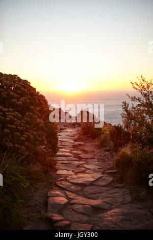 Weg auf den Lions Head Berg, Western Cape, Cape Town, Südafrika, Afrika - Stockfoto