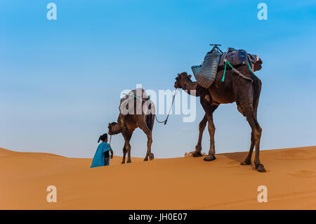 Kamel-Karawane in Erg Chebbi Wüste, Sahara Wüste in der Nähe von Merzouga, Marokko - Stockfoto