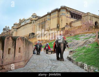 JAIPUR, INDIEN - 28. JULI 2015. Nicht identifizierte Mahouts und ihre Elefanten in der Nähe von Amber Fort, herrliche - Stockfoto