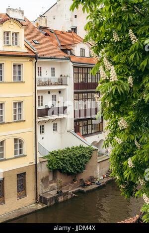 Die alten bunten Häuser in der Nähe des Flusses in Prag. Die Gebäude sind mit Pflanzen bewachsen. - Stockfoto