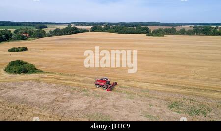 Harvester - dreschmaschine auf einem Feld von Gerste in der Nähe von Zapel, Mecklenburg-Vorpommern, Deutschland - Stockfoto