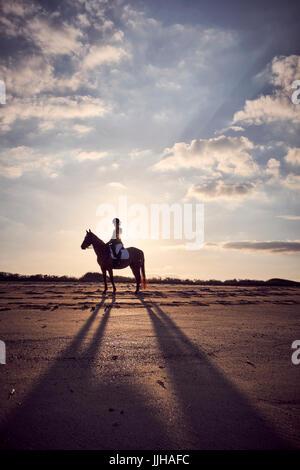 Eine junge Frau, die ihr Pferd am Strand bei Sonnenuntergang zu reiten. - Stockfoto