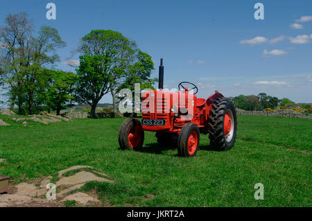 Internationale B-250 1957 McCormick Traktor - Stockfoto