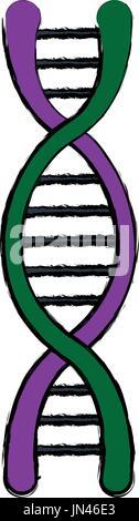DNA-Molekül Struktur Wissenschaft genetische Struktur - Stockfoto