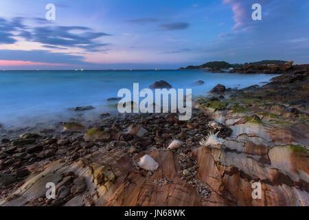 Stillleben-Kunst der Muschel am Strand - Stockfoto
