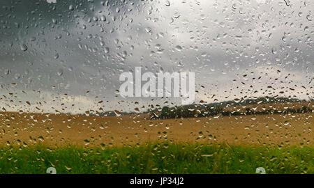 Regentropfen auf Fenster und Gold Feld Hintergrund - Stockfoto