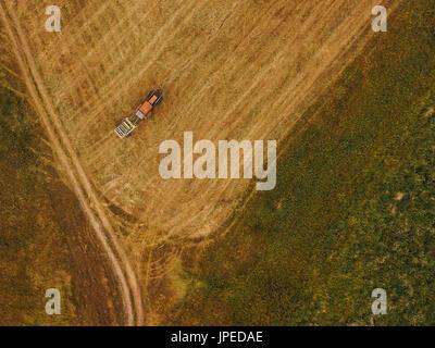 Luftaufnahme des Traktors machen Heuballen rollt im Feld nach der Weizenernte, Drohne pov - Stockfoto