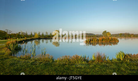Panoramablick auf die ländliche Landschaft in der Dämmerung mit Coarse Fishing Teich gesäumt mit Grün und Gold Vegetation unter blauem Himmel in der englischen Landschaft