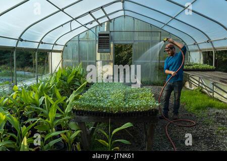 Liebe ist Liebe Farm, Atlanta Georgia. Farm Manager Maxwell ...