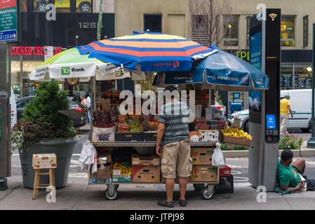 Man ordnet Obst auf seinem Stand in Manhattan - Stockfoto