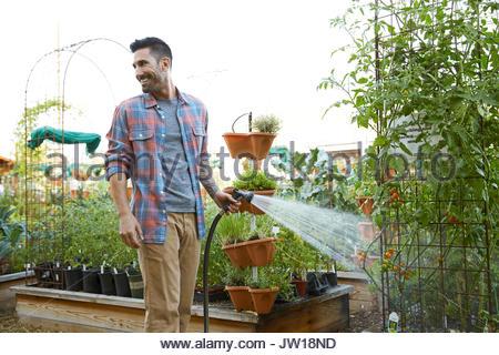 Lächelnd mann Bewässerung von Pflanzen im Gemüsegarten - Stockfoto