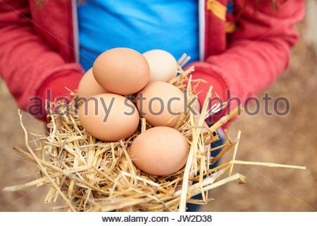Close up Girl Holding frischen, organischen braune Eier - Stockfoto