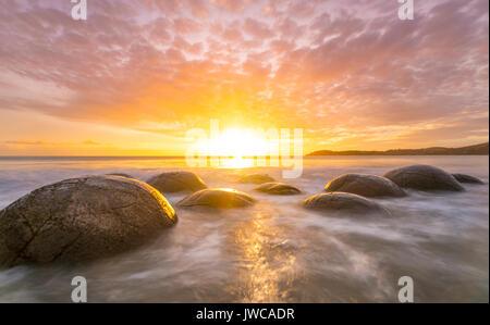 Moeraki Boulders, bei Sonnenaufgang, geologische Formation, Koekohe Strand, Moeraki, Ostküste, Otago, Südinsel, - Stockfoto