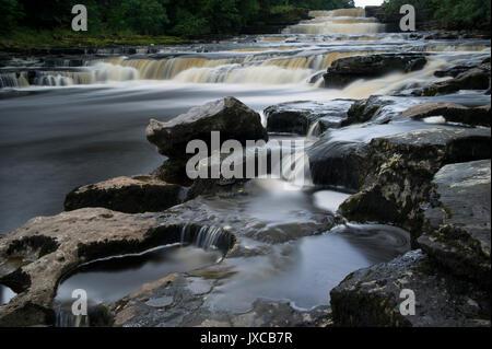 Die berühmten aysgarth fällt Wasserfall (Lower Falls) in der Nähe von Hawes in den Yorkshire Dales National Park, - Stockfoto