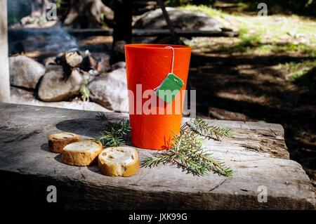 Tasse Tee. Warmes Getränk in Wald. Picknick im Wald - Stockfoto