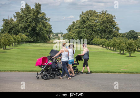 Eine Gruppe der jungen Mütter Babys drücken in Buggys auf dem Burghley House Estate im Sommer Sonnenschein, in der - Stockfoto