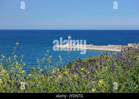 Steg mit einem Leuchtturm und Blumen im Vordergrund, Collioure, Vermilion Küste, Mittelmeer, Roussillon, Pyrénées - Stockfoto