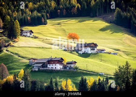Herbstliche Landschaft mit Hütten und Bäume. Santa Maddalena, Funes, Bozen, Trentino Alto Adige, Südtirol, Italien, - Stockfoto