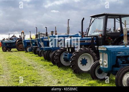 Ford Traktoren in einer Reihe an landwirtschaftliche Messe in Hennock Devon, Traktor, Diskussion, Landwirt, Ford - Stockfoto