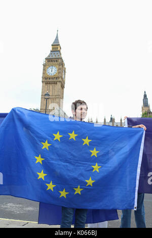 London, Großbritannien. 21 Aug, 2017. Die Demonstranten entrollen Europa Flaggen als Massen an Parlament Platz vor - Stockfoto