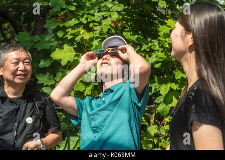 New York, USA. 21 Aug, 2017. New York, NY, 21. August 2017 - eclipse Beobachter in Washington Square versammelt, - Stockfoto