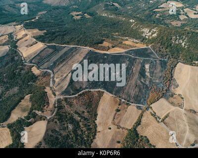 Brandstiftung:, Masse durch die waldbrandschäden verbrannt, verbranntes Feld in Reggio Emilia Hügel, Vedriano, Trinità - Stockfoto