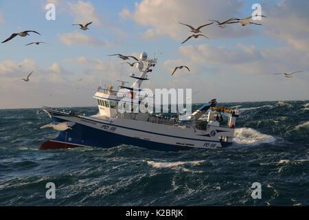 """Fischereifahrzeug"""" Harvester' Arbeiten in schweren schwillt an, die durch an der Nordsee, Dez 2014 umgeben. Eigentum - Stockfoto"""
