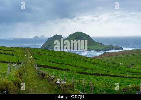 Skellig Inseln, Puffin Island, County Kerry, Irland, Europa. September 2015. - Stockfoto